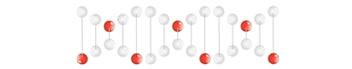 LABOKLIN DNA STRAND