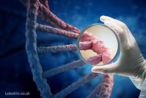 gene magnify laboklin